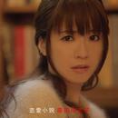 恋愛小説/藤田麻衣子