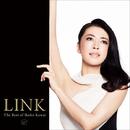 LINK ~The Best of Ikuko Kawai ~/川井 郁子