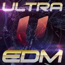 ウルトラ EDM~パーフェクト・ベスト~/VARIOUS