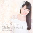 True Destiny / Chain the world/東山 奈央