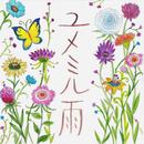 ユメミル雨/新居 昭乃