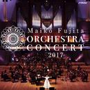 藤田麻衣子 オーケストラコンサート2017/藤田麻衣子