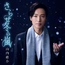 さらせ冬の嵐(笑顔盤)/山内 惠介