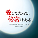 ドラマ「愛してたって、秘密はある。」オリジナル・サウンドトラック/林ゆうき 橘麻美