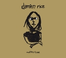 Rootless Tree/Damien Rice