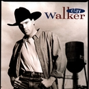 Where Do I Fit Into The Picture/Clay Walker