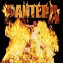 Revolution Is My Name/Pantera