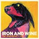 Flightless Bird, American Mouth (Live)/Iron & Wine
