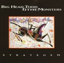 In The Morning/Big Head Todd and The Monsters