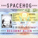 In The Meantime/Spacehog