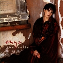 The Celts (album TV ad)/Enya