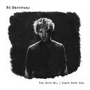 You Need Me, I Don't Need You/Ed Sheeran