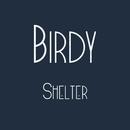 Shelter/Birdy