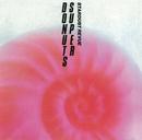 SUPER DONUTS/STARDUST REVUE/STARDUST REVUE with 翔子