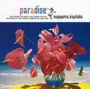 PARADISE~夏の恋を続けよう~/杉山清貴