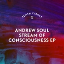 Stream of Consciousness EP/Andrew Soul