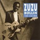 Texas Bluesman/ZuZu Bollin