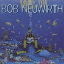 Look Up/Bob Neuwirth