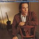 American Primitive/Steve James