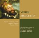 Verdi : Rigoletto/Carlo Rizzi