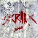 Bangarang (feat. Sirah)/Skrillex