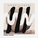 Sweetest Treasure (Remixes)/Zebra and Snake