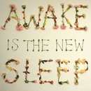 Awake is the New Sleep/Ben Lee