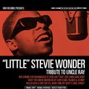 "Tribute to Uncle Ray/""Little"" Stevie Wonder"