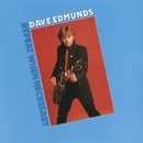Repeat When Necessary/Dave Edmunds