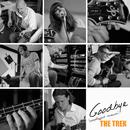 Goodbye (Unplugged Version)/The Trek