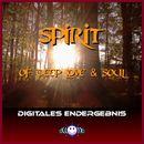 Spirit of Deep Love and Soul/Digitales Endergebnis