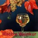 Mach e Weinkur/Kurt Kotterer