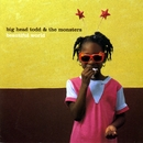 Beautiful World/Big Head Todd and The Monsters