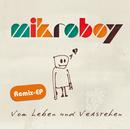 Vom Leben Und Verstehen (Remix EP)/Mikroboy