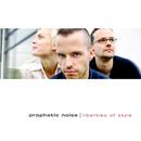 Liberties Of Style/Prophetic Noise