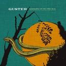 Satellite/Guster