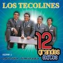 12 Grandes exitos Vol. 2/Los Tecolines