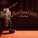 In My Blood/Black Stone Cherry