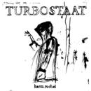 Harm Rochel (2 Track)/Turbostaat