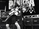Domination [Live]/Pantera
