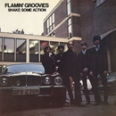 Shake Some Action/Flamin' Groovies