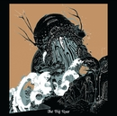 Whirring/The Joy Formidable
