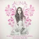 When You Leave [Numa Numa] Basshunter radio mix/Alina