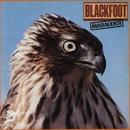 Marauder/Blackfoot