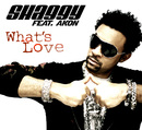 What's Love (feat. Akon)/SHAGGY
