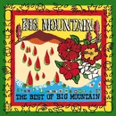 The Best Of Big Mountain/Big Mountain