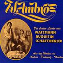 Die besten Lieder aus Watzmann, Augustin, Schaffnerlos/Wolfgang Ambros