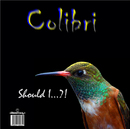 Should I?!/Colibri