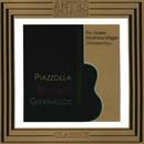 Piazzolla, Brouwer, Granados/Gitarrenduo Pia Grees & Matthias Kläger