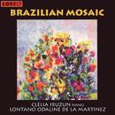 Brazilian Mosaic/Brazilian Mosaic